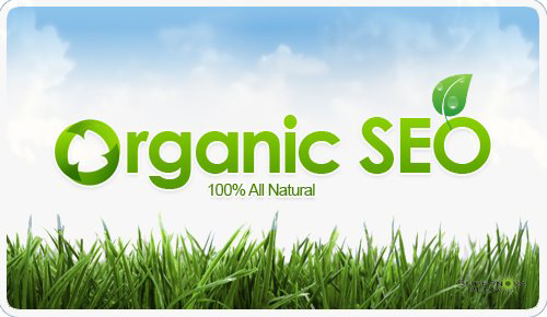 Organic SEO - A guide to get more likes on facebook at Nova Scotia Social Media Consulting