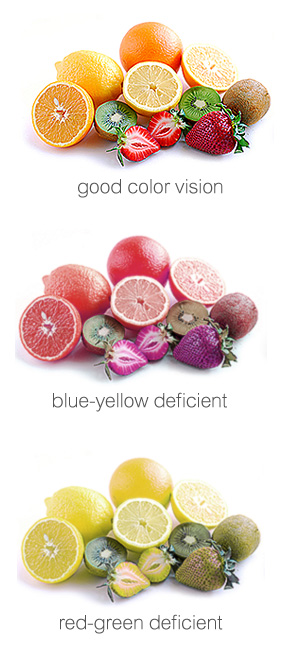 This image displays the different effects of colour blindness. In particular, blue-yellow and red-green deficiencies.